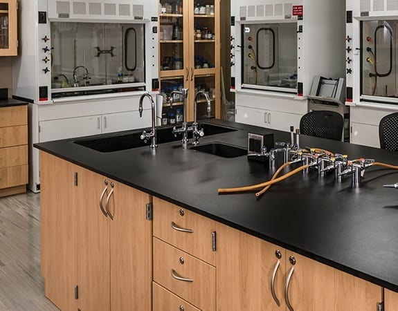 lab casework science room with fume hoods